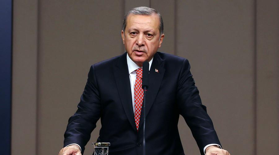 Turkey takes care of European values more than many EU countries, Erdogan says