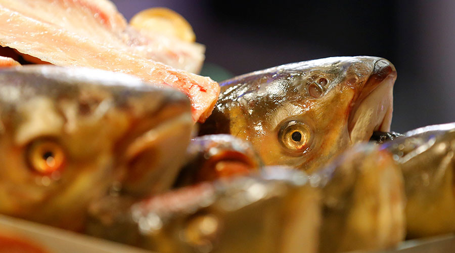Last supper? Alert in Japan as deadly fugu fish sold by mistake in supermarket