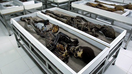 Tales from the crypt: Russian granny kept relatives' mummified bodies in her apartment for years