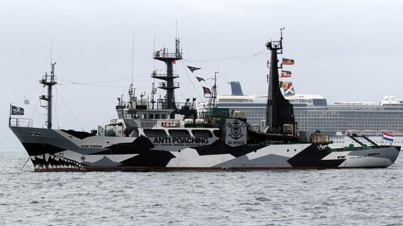 2 ships set sail to 'intercept' Japanese whale fleet (PHOTOS, VIDEO)