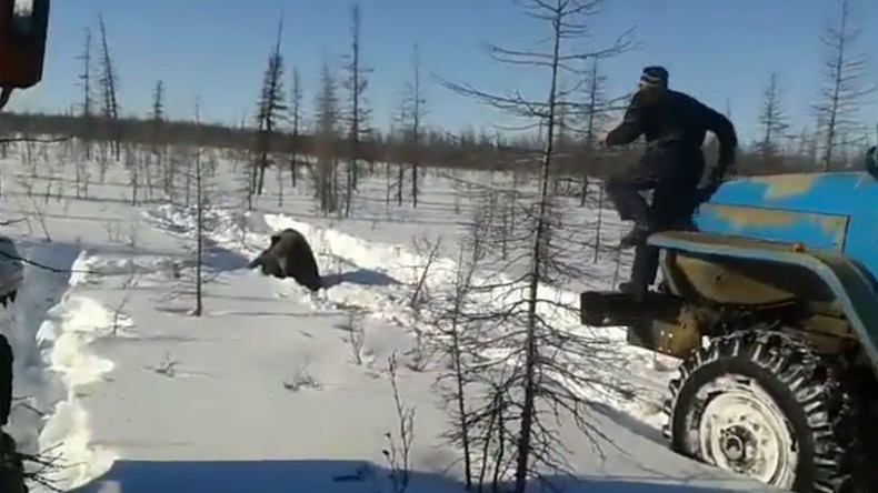 'Crush him!' Bear tortured & killed by workers with trucks in Siberia (GRAPHIC VIDEO)