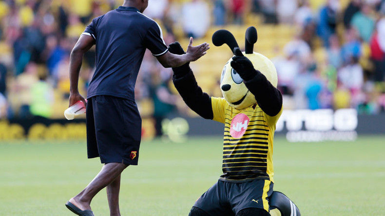 'Harry the Hornet out of order': Football mascot's mock dive sparks row