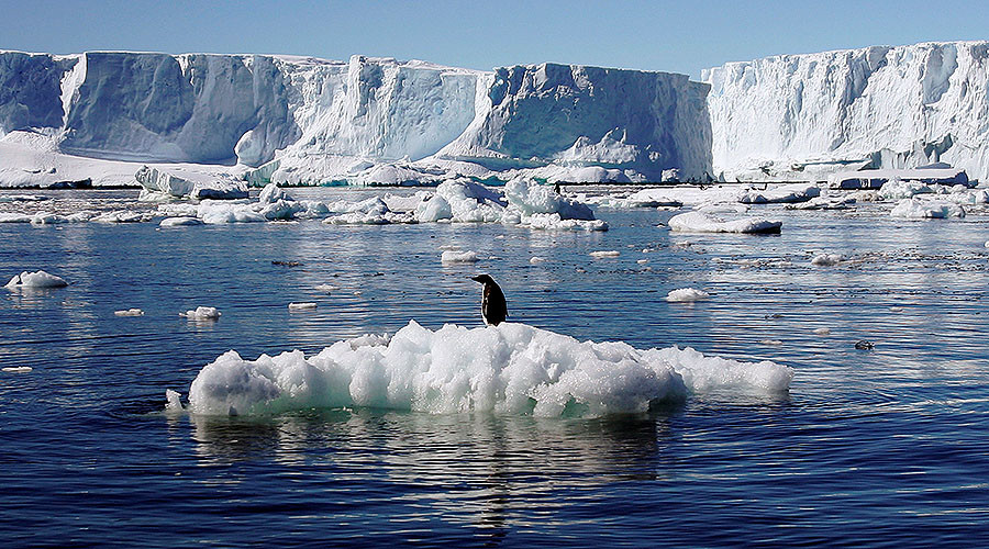 Chunk of ice 'the size of India' disappears from polar regions