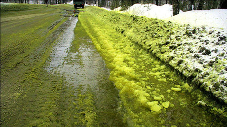 © Vsevolod Oreshkin The green slush made its appearance in the city of Pervouralsk in the Urals.