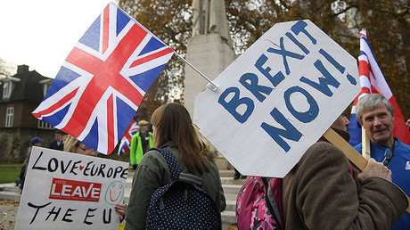 Demonstrators supporting Brexit protest outside of the Houses of Parliament in London, Britain, November 23, 2016. © Toby Melville