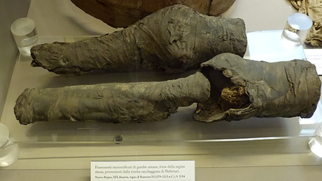 3,200-yo set of mummified legs belonged to Queen Nefertari, study concludes