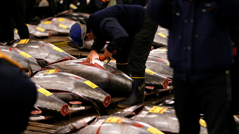 Detection of cancer-causing chemical at Tokyo site delays relocation of world's largest fish market