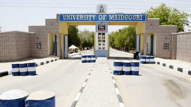 12yo girl among suicide bombers in Nigerian university attack