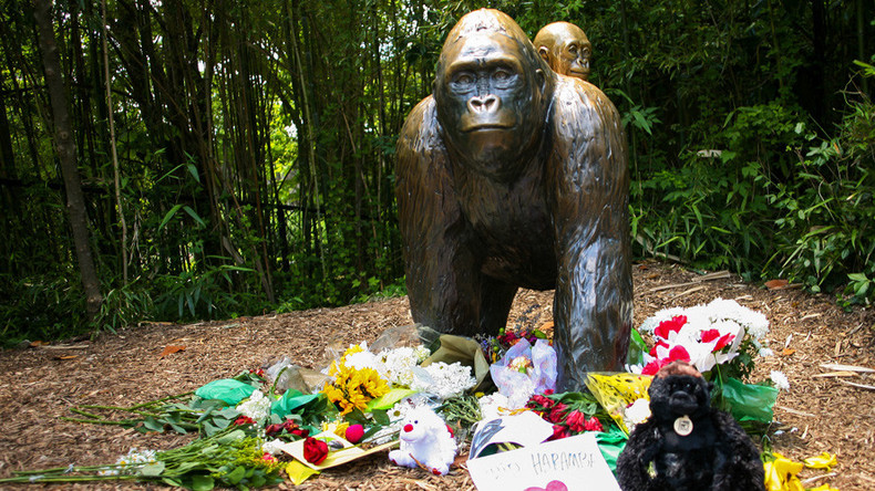 Harambe's grandmother dies, conspiracy theories begin & Russia blamed