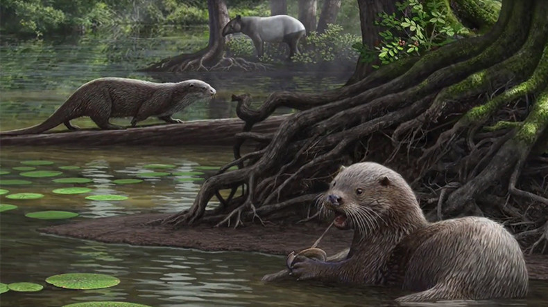 Giant predatory otters roamed China 6 million years ago - new research