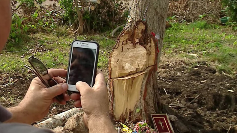 Stickmata? 'Tree Jesus' draws believers to dead trunk in Argentina (VIDEO)