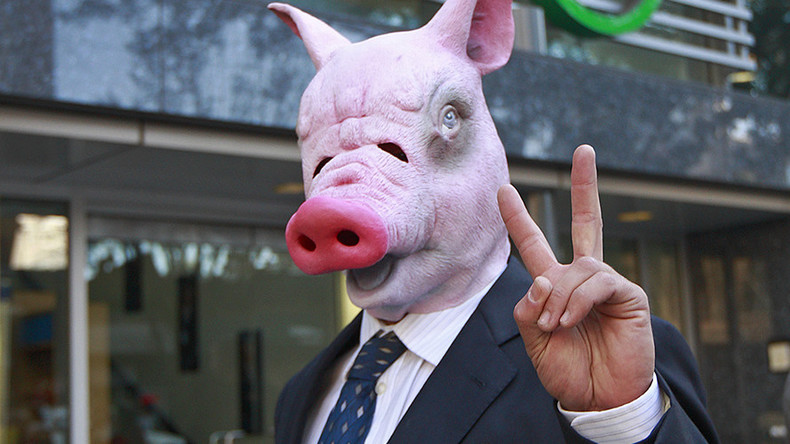 Animal Farm: Scientists create first pig-human hybrid (PHOTO)