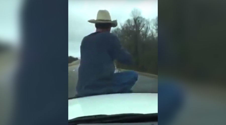 Only in America: Cowboy lassoes calf from hood of cop car (VIDEO)