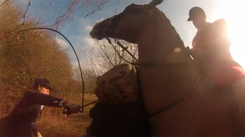 Royal godmother accused of whipping fox hunt protester (VIDEO)