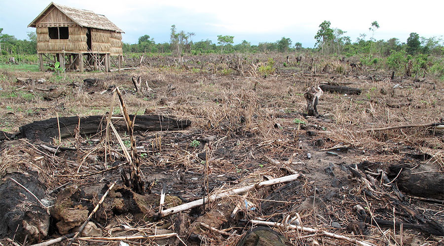 Welcome to Sumatra, Indonesia, an environmental genocide in the making
