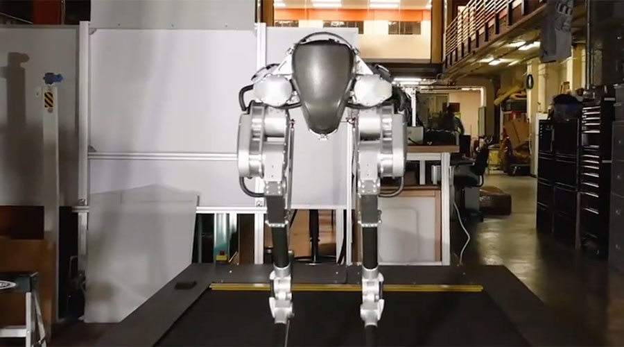 Raptor legs & human hips: Giant leap for walking robots