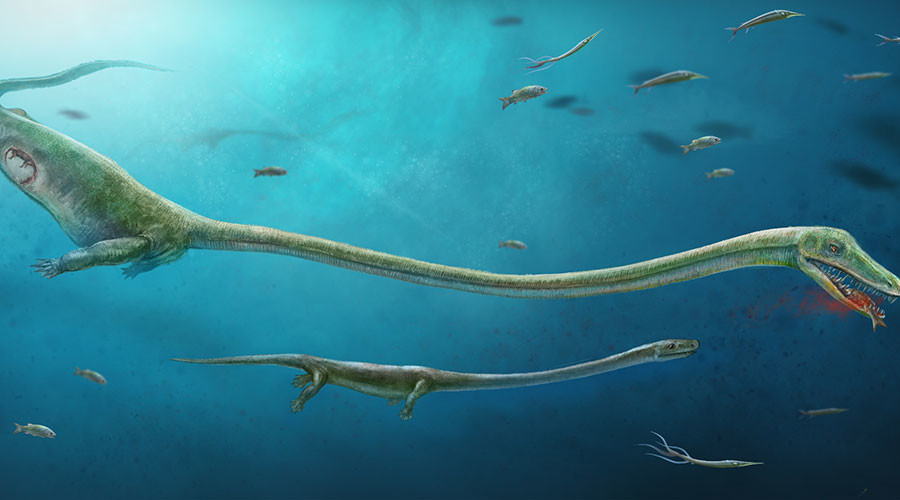 First case of live birth from archosaur family discovered by archaeologists