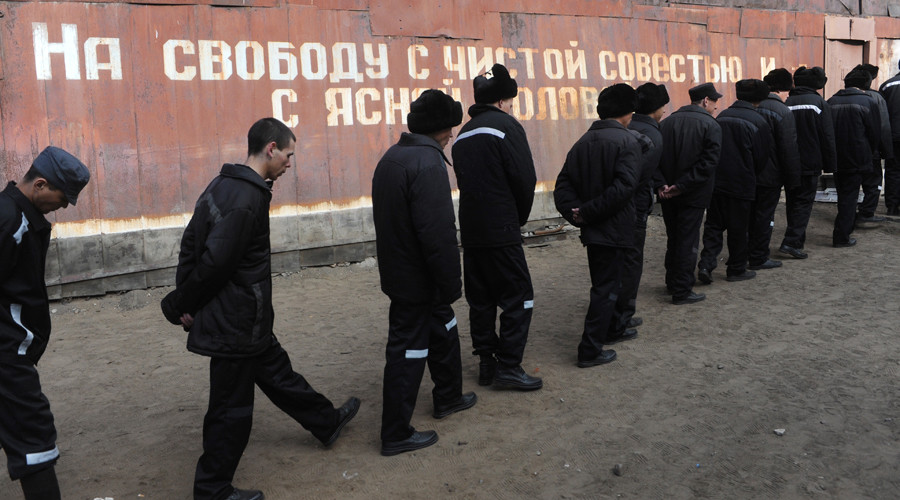 Russian rights council to seek permission for prison inspections