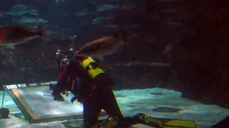 Extreme artist braves shark-infested waters to pay homage to Spanish wingsuit pioneer (VIDEO)