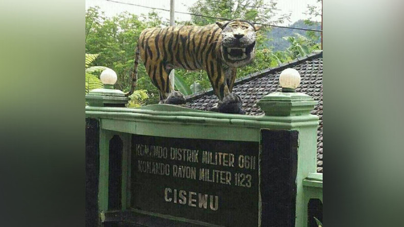 'Funny looking' tiger statue removed by military after torrent of online humiliation
