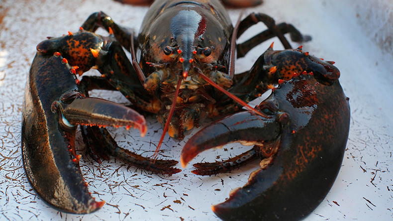 Craze for lobsters in China sends US exports soaring