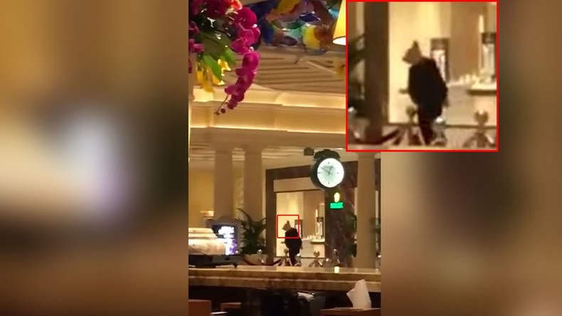 Animal mask-wearing suspects arrested after burglary at the Bellagio in Las Vegas (VIDEOS, PHOTOS)