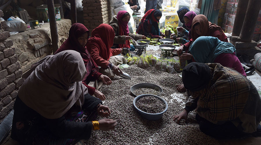 Taliban goes nuts, making millions selling pistachios