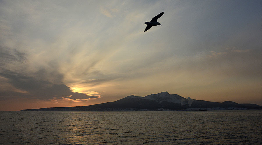 Japan offers Russia common digital currency on Kuril Islands