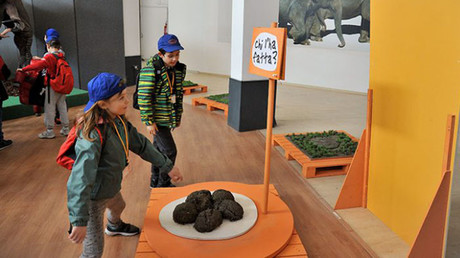 Poo at the zoo: Rome biopark opens feces exhibition for curious children