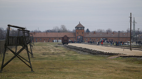 Israeli teen arrested & fined for urinating on Auschwitz memorial