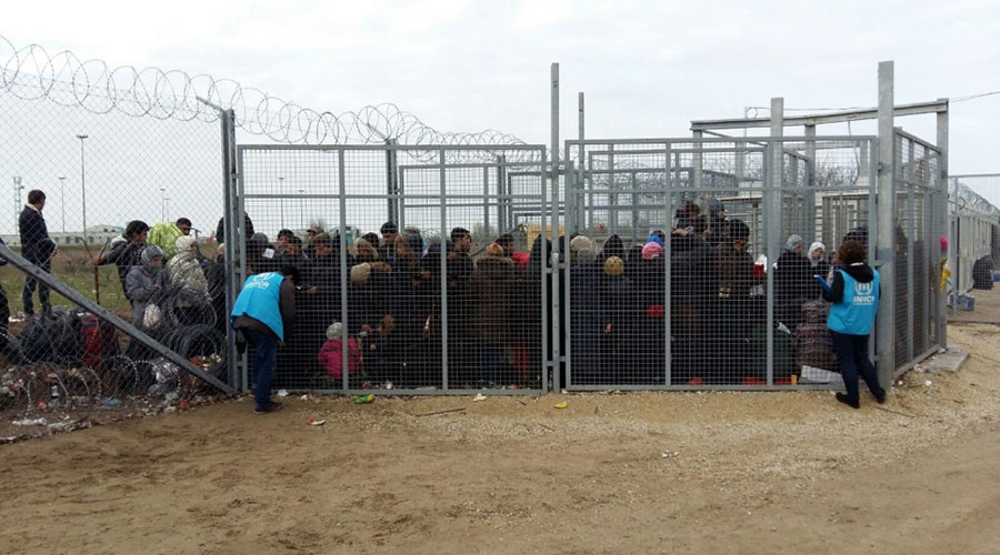 'No transfers' of asylum-seekers from Germany back to Hungary until it follows 'EU norms'