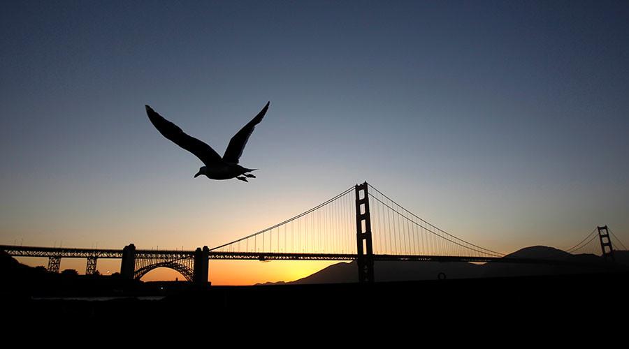 80 years, 1,500 deaths: Suicide deterrent nets going up at Golden Gate Bridge
