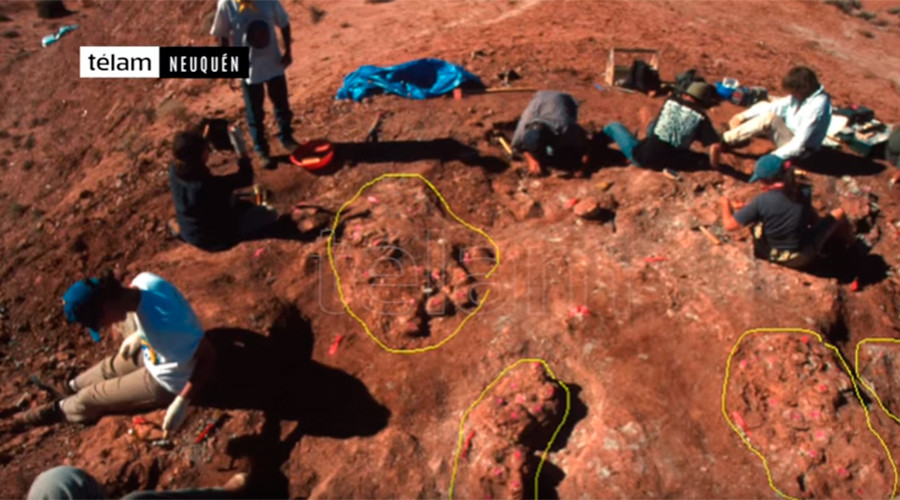 70mn yo dinosaur eggs with embryos inside unearthed in Argentina