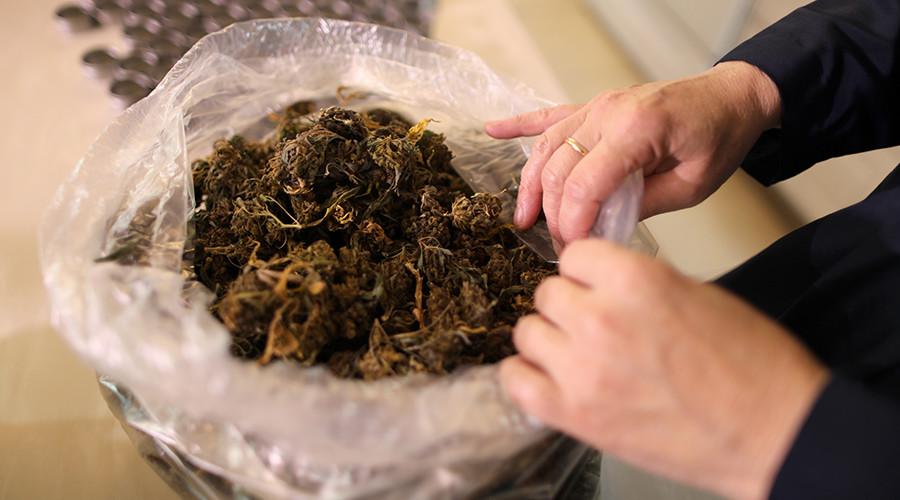 Medical marijuana program 'could save US taxpayer $1bn' – study