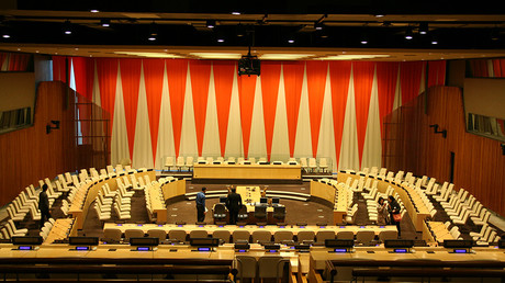 United Nations Economic and Social Council chamber New York City © Wikipedia