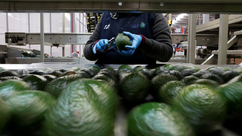 Back that Hass up: Global demand for avocados skyrockets, pushes prices to record highs