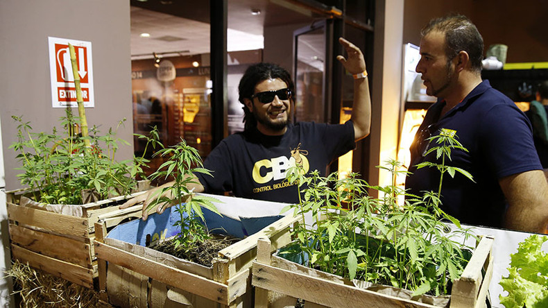 State-grown dope: Uruguayans sign up to buy cannabis in drugstores