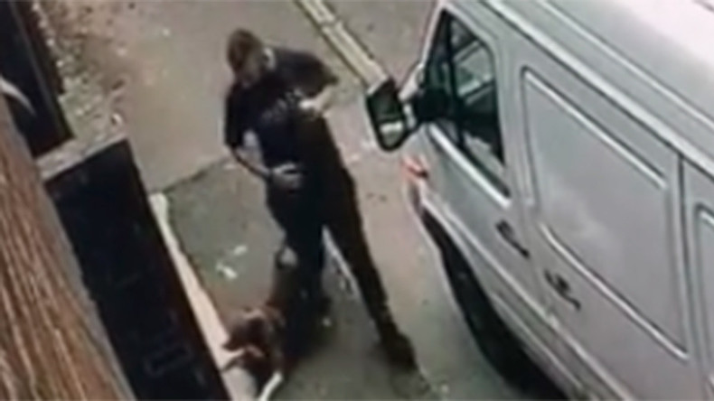 Dog savagely beaten by man in horrific footage (GRAPHIC IMAGES)