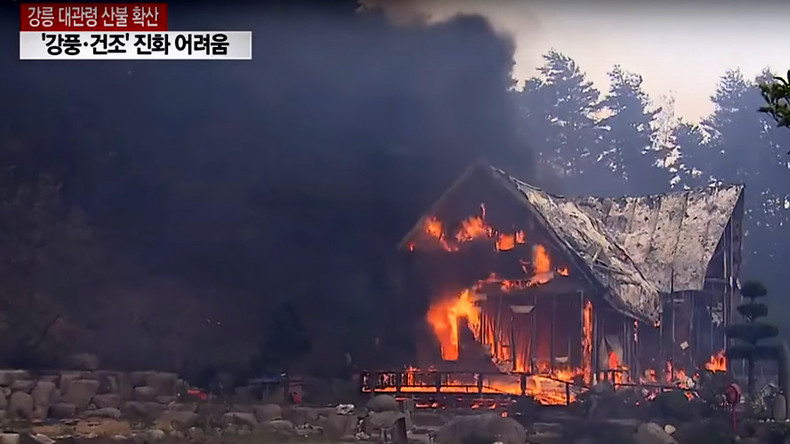 Raging forest fire forces hundreds from their homes in South Korea (PHOTOS, VIDEOS)