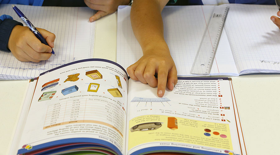 'Anatomically correct' clitoris appears for 1st time in French textbooks after feminist campaign