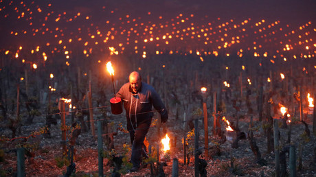 Workers and wine growers light heaters early in the morning, to protect vineyards from frost damage outside Chablis, France © Christian Hartmann