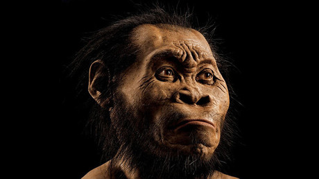 A reconstruction of a Homo naledi face. © National Geographic