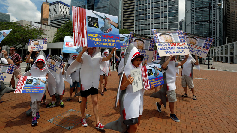 'Shark fin for shark only': Hong Kong protesters in shark costumes march against fin soup (VIDEO)