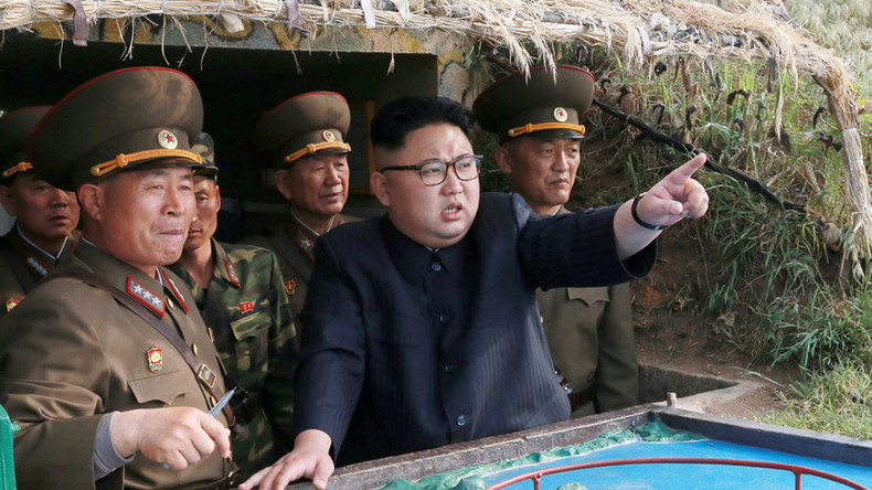 Former S. Korean President Park plotted to kill North Korean leader Kim Jong-un – report
