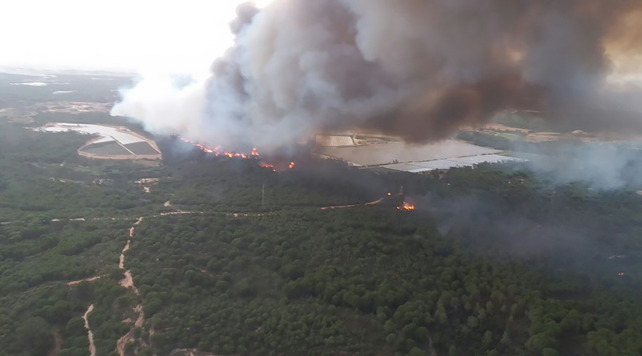 1000s evacuated as Spanish wildfire rips through UNESCO World Heritage site (PHOTOS, VIDEOS)