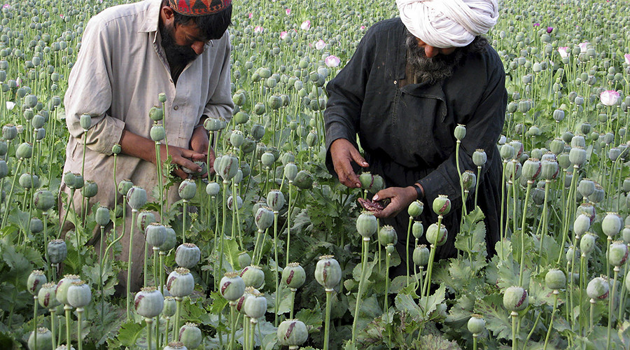 Drug use in Iran 'more than doubled' in last 6yrs, 3.5% of population now regular users