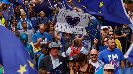 Pro-Europe demonstrators protest during a