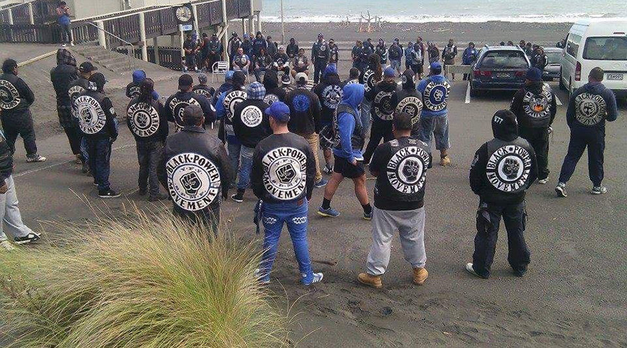 New Zealand gangs launch 'fight club' to tackle violence