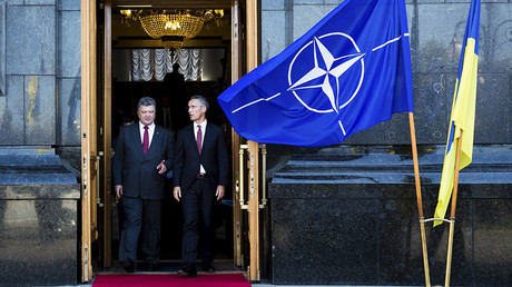 NATO membership is Ukraine's main foreign policy priority