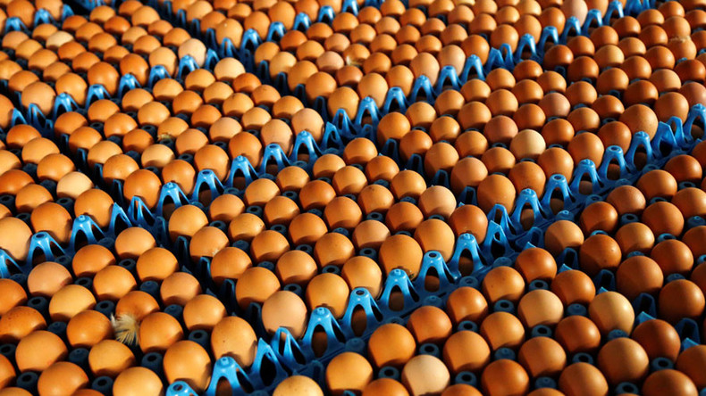 700,000 pesticide-contaminated eggs imported into UK – authorities